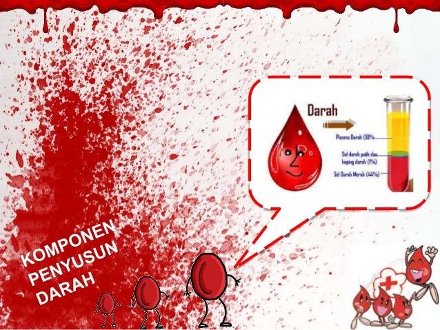 Sistem Peredaran Darah Manusia Dan Hewan