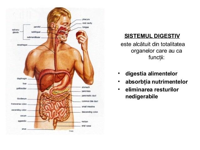 SISTEMUL DIGESTIV este alcătuit din totalitatea organelor care au ca funcţii: • digestia alimentelor • absorbţia nutriment...