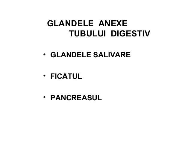 FICATUL Ficatul, cea mai mare glandă exocrină (1,5 – 2 kg), este situat în partea dreaptă superioară a abdomenului, sub di...