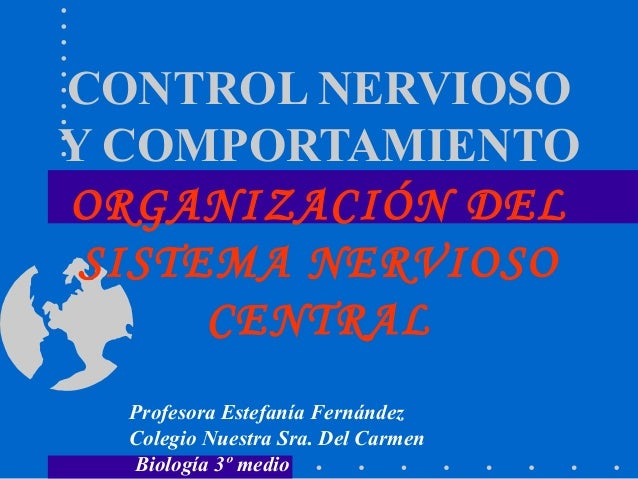 CONTROL NERVIOSOY COMPORTAMIENTOORGANIZACIÓN DEL SISTEMA NERVIOSO      CENTRAL  Profesora Estefanía Fernández  Colegio Nue...