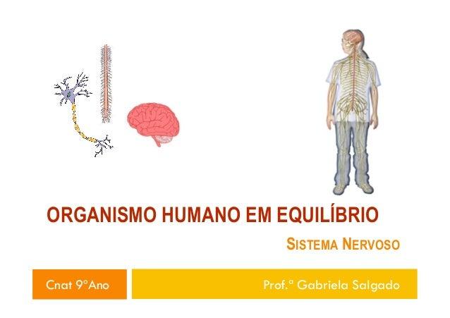 ORGANISMO HUMANO EM EQUILÍBRIO SISTEMA NERVOSO Cnat 9ºAno  Prof.ª Gabriela Salgado