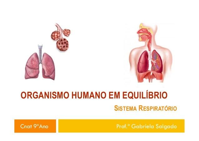 ORGANISMO HUMANO EM EQUILÍBRIO SISTEMA RESPIRATÓRIO Cnat 9ºAno Prof.ª Gabriela Salgado