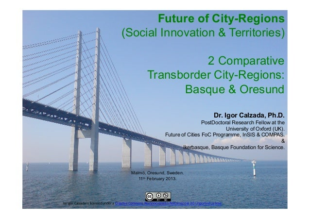 Future of City-Regions                                                    (Social Innovation & Territories)               ...
