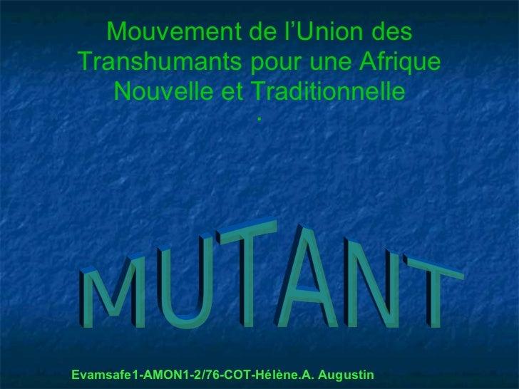 Mouvement de l'Union desTranshumants pour une Afrique   Nouvelle et Traditionnelle                          .Evamsafe1-AMO...