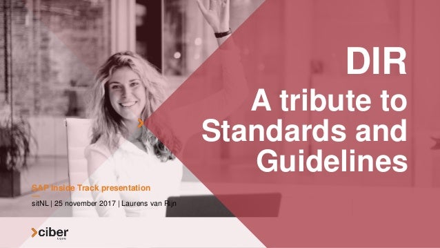 DIR A tribute to Standards and Guidelines sitNL | 25 november 2017 | Laurens van Rijn SAP Inside Track presentation