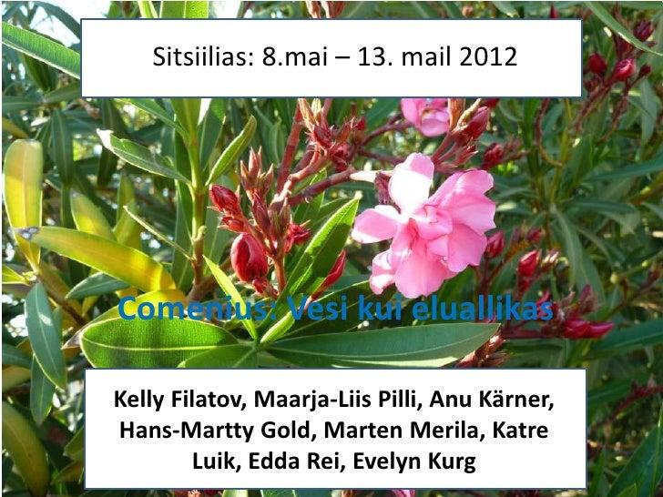Sitsiilias: 8.mai – 13. mail 2012         Sitsiilia (Itaalia)Comenius: – 13. mai 2012    8.Mai Vesi kui eluallikasKelly Fi...