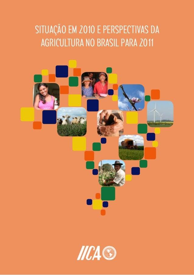 SITUAÇÃO EM 2010 E PERSPECTIVAS DAAGRICULTURA NO BRASIL PARA 2011