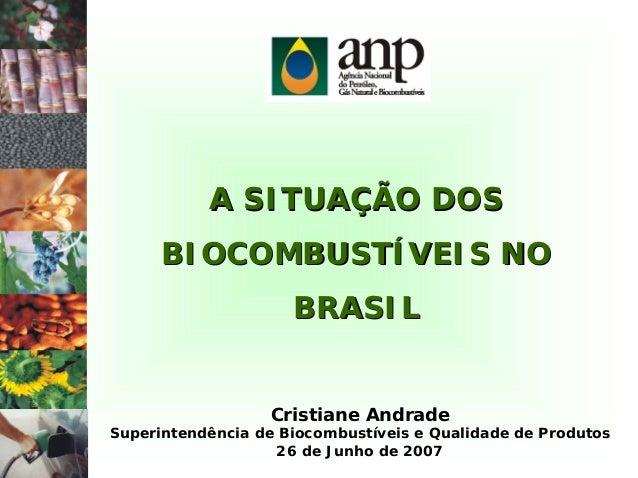 A SITUAÇÃO DOSA SITUAÇÃO DOS BIOCOMBUSTÍVEIS NOBIOCOMBUSTÍVEIS NO BRASILBRASIL Cristiane Andrade Superintendência de Bioco...