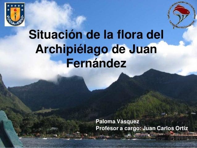 Situación de la flora del Archipiélago de Juan Fernández Paloma Vásquez Profesor a cargo: Juan Carlos Ortiz