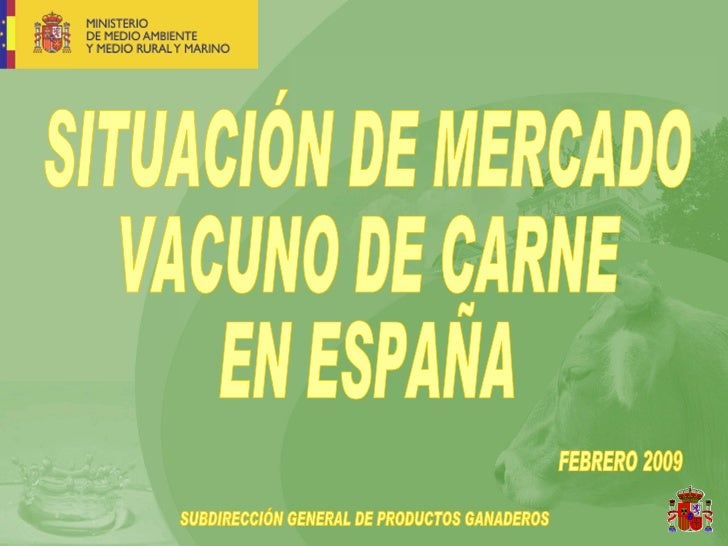 SITUACIÓN DE MERCADO VACUNO DE CARNE EN ESPAÑA FEBRERO 2009 SUBDIRECCIÓN GENERAL DE PRODUCTOS GANADEROS
