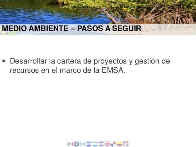 MEDIO AMBIENTE – PASOS A SEGUIR   Desarrollar la cartera de proyectos y gestión de recursos en el marco de la EMSA.