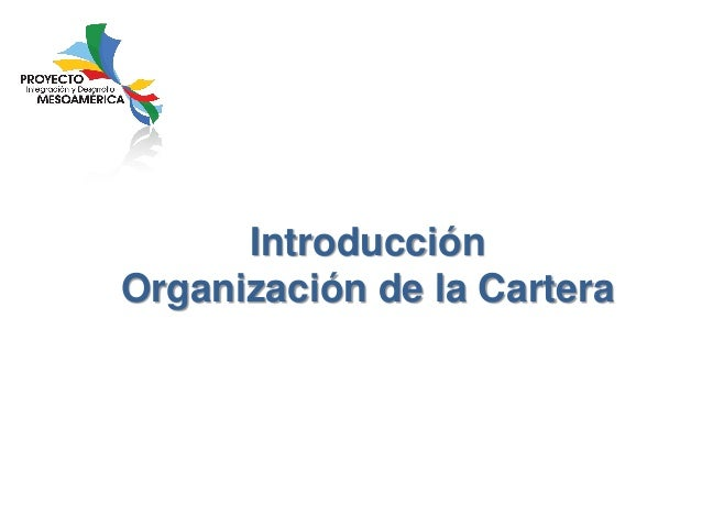 Introducción Organización de la Cartera