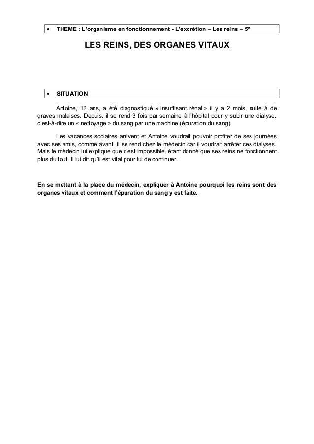 • THEME : L'organisme en fonctionnement - L'excrétion – Les reins – 5° LES REINS, DES ORGANES VITAUX • SITUATION Antoine, ...