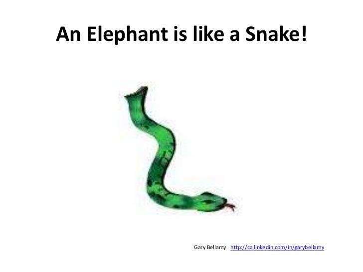 An Elephant is like a Snake!<br />http://ca.linkedin.com/in/garybellamy<br />Gary Bellamy<br />