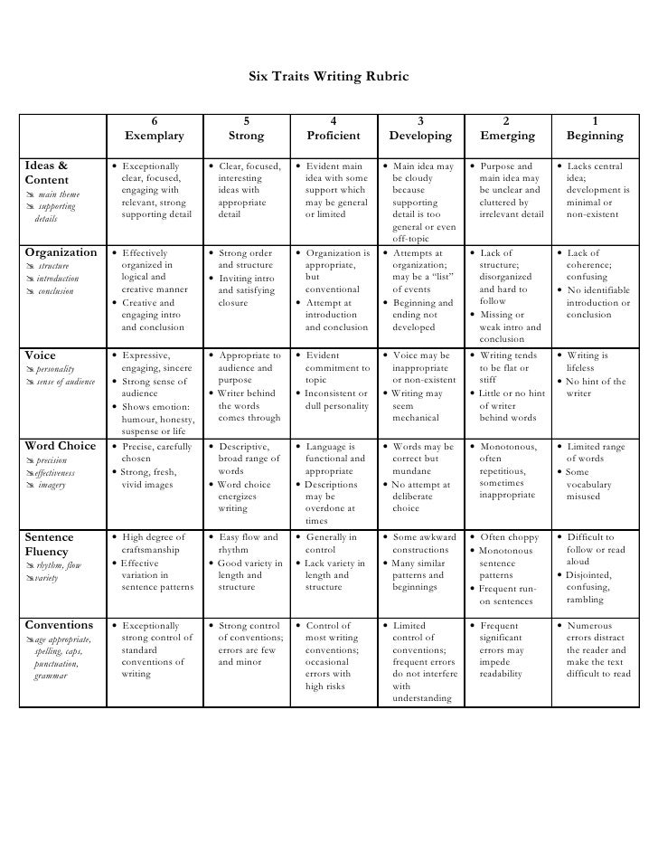 6 traits of writing rubric high school