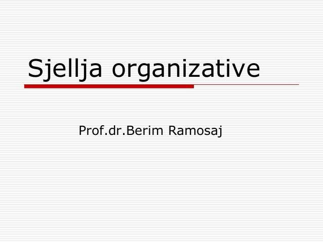 Sjellja organizative Prof.dr.Berim Ramosaj