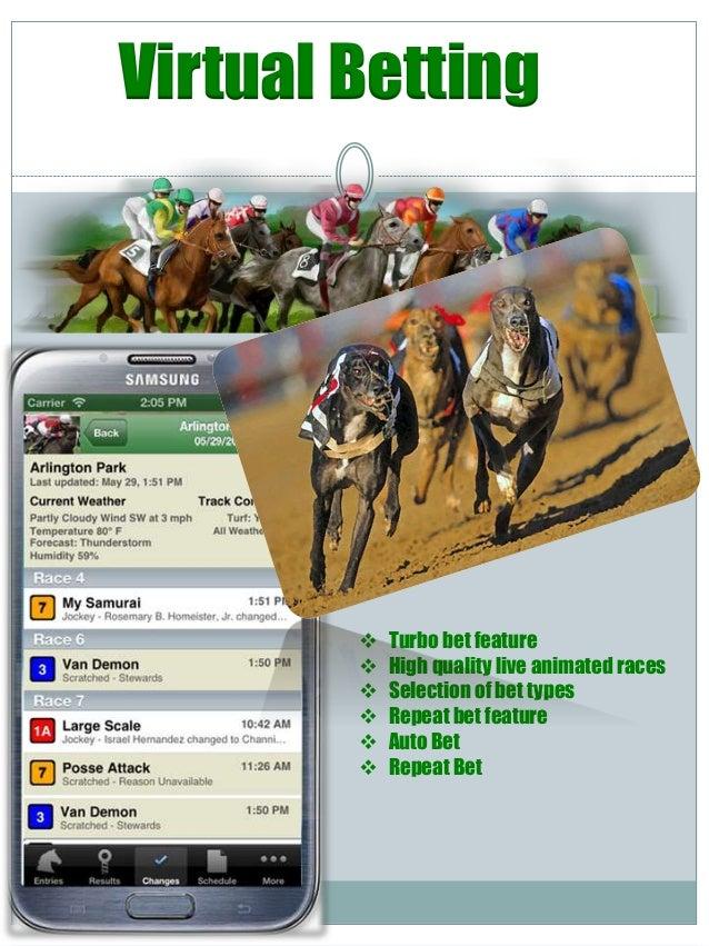 Gambling software development winning gambling secrets