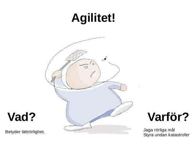 Skala agilt Slide 2