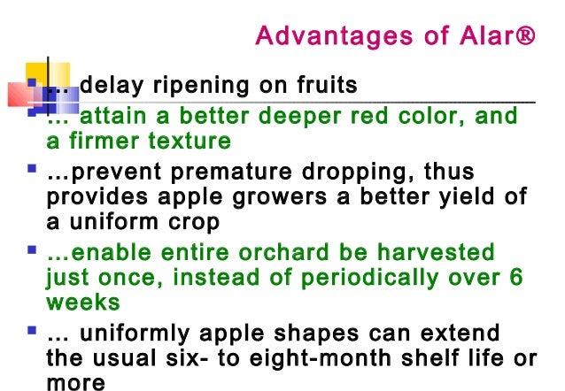 Skam 17 2004 Balok Alar Issue On Apples