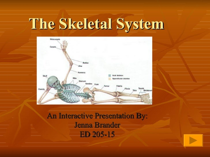 The Skeletal System An Interactive Presentation By: Jenna Brander ED 205-15