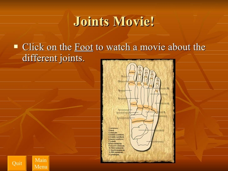 Joints Movie! <ul><li>Click on the  Foot  to watch a movie about the different joints.  </li></ul>Quit Main Menu