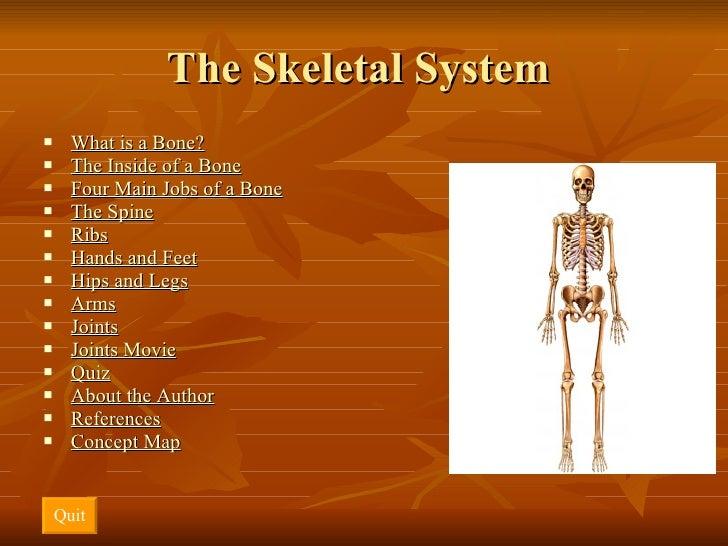 The Skeletal System  <ul><li>What is a Bone? </li></ul><ul><li>The Inside of a Bone </li></ul><ul><li>Four Main Jobs of a ...