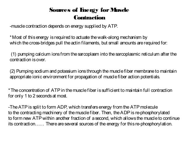 General Physiology - Skeletal muscles