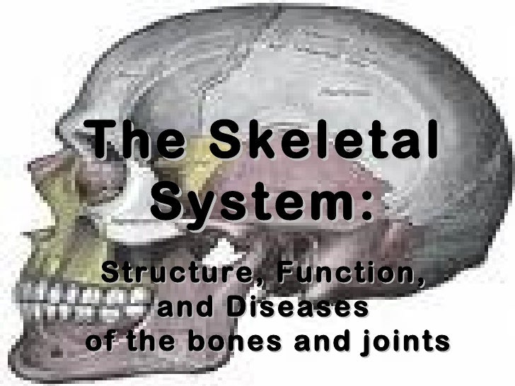 The Skeletal System: Structure, Function, and Diseases of the bones and joints