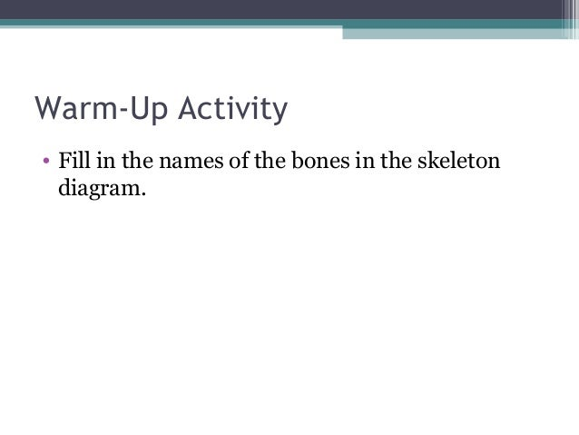 Anatomy Physiology Lecture Notes Skeletal System