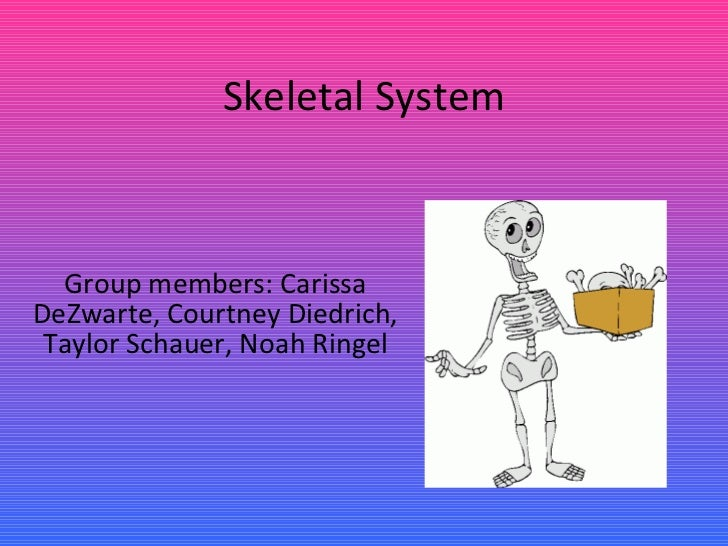 Skeletal System Group members: Carissa DeZwarte, Courtney Diedrich, Taylor Schauer, Noah Ringel