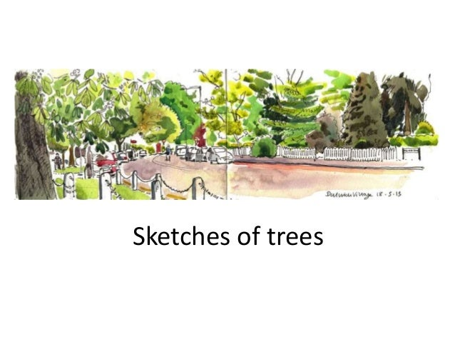 Sketches of trees
