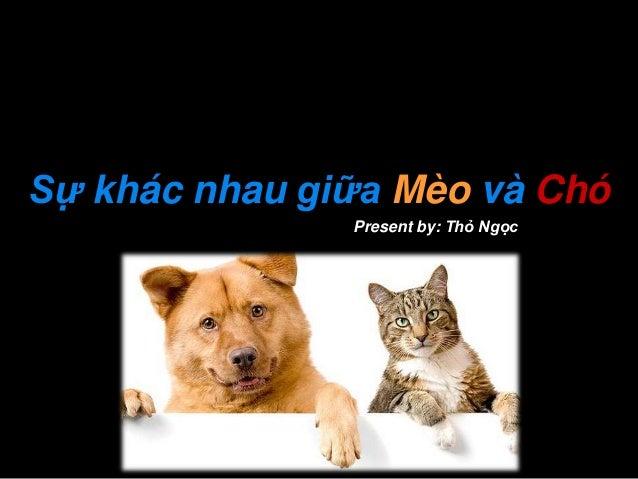 Sự khác nhau giữa Mèo và Chó Present by: Thỏ Ngọc  