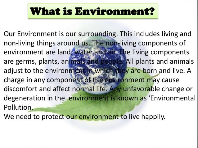 why we should protect our environment So we should respect these five  home trending we must protect our environment  we love our parents that are why we respect or we respect our parents that are.