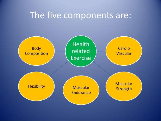 11 components of physical fitness essay Components of physical fitness explore various components of physical fitness including the five major components of physical fitness [explore] develop and implement strategies to improve general health through physical activity [reason].