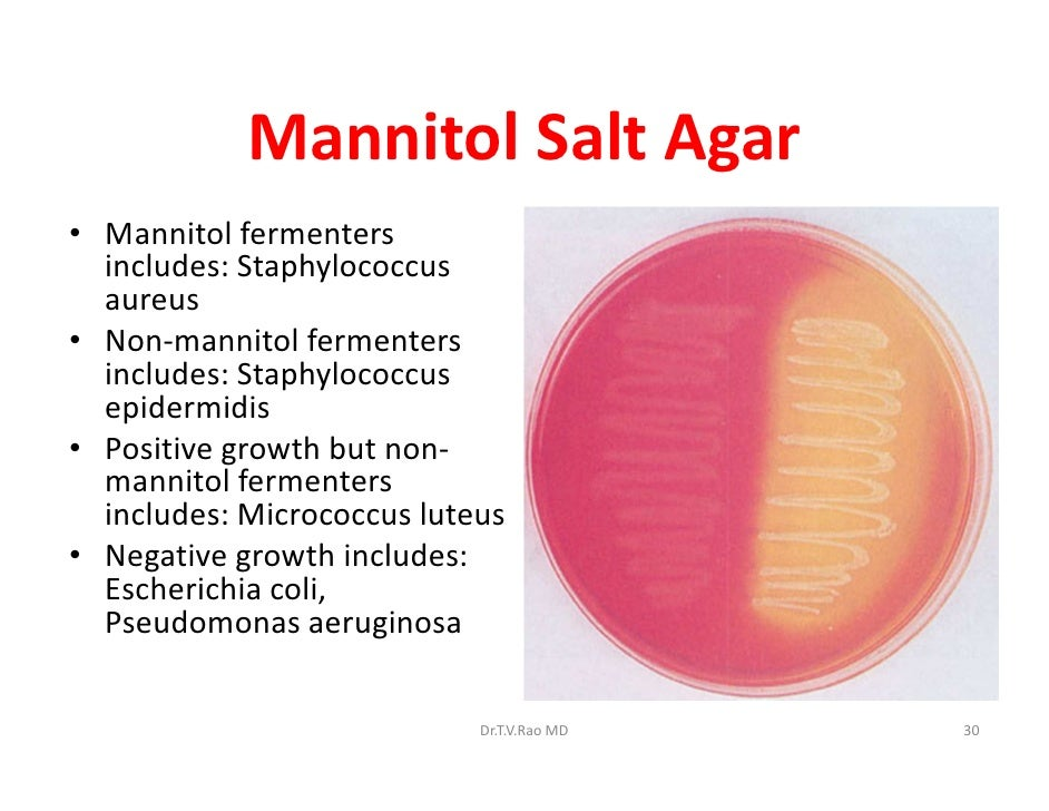 Skills In Medical Microbiology