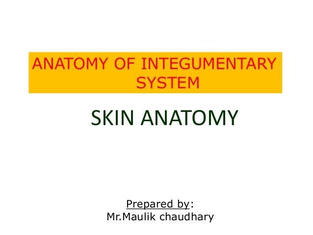 Skin Maulik