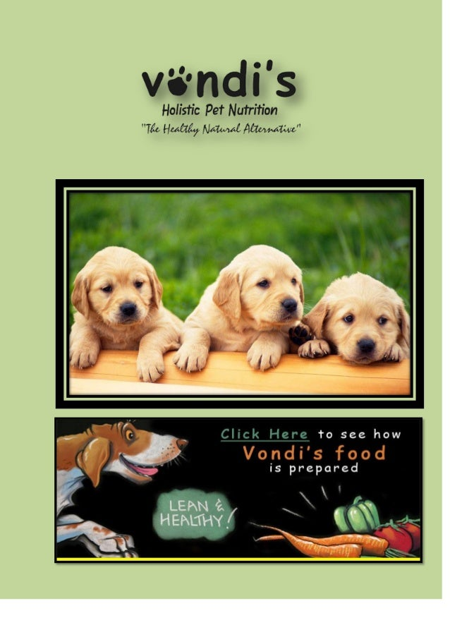 Nutrition Deficiency as a Cause for Skin Allergies in Dogs Just like human beings, dogs also need to get all the essential...