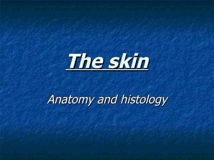 The skin Anatomy and histology