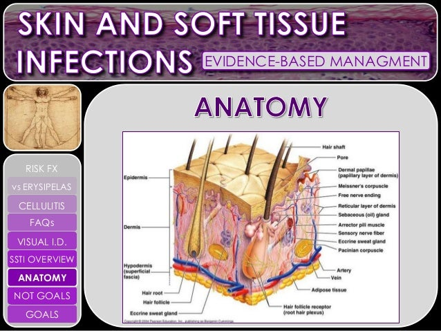 Skin and Soft Tissue Infections