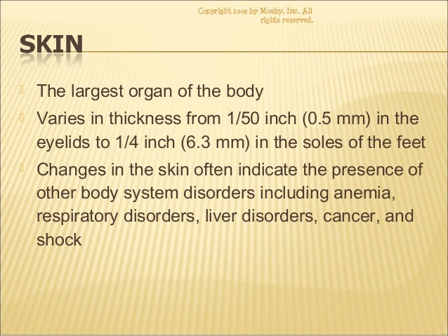 skin diseases disorders conditions, Muscles