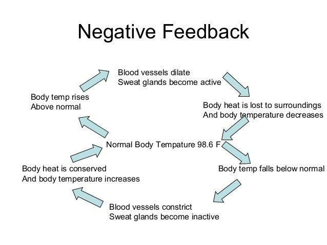 Skin functions temperature decreases normal body tempature 986 f 10 negative feedback ccuart Choice Image