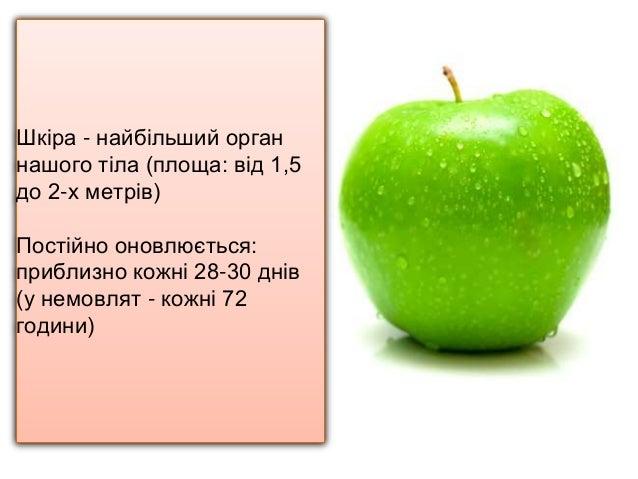 ШКІРА АФРОДІТИ. ХАРЧУВАННЯ ПРОТИ СТАРІННЯ.  Slide 2