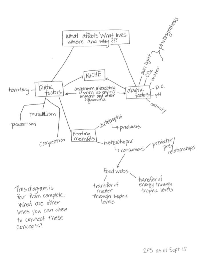 Concept map for 2FS