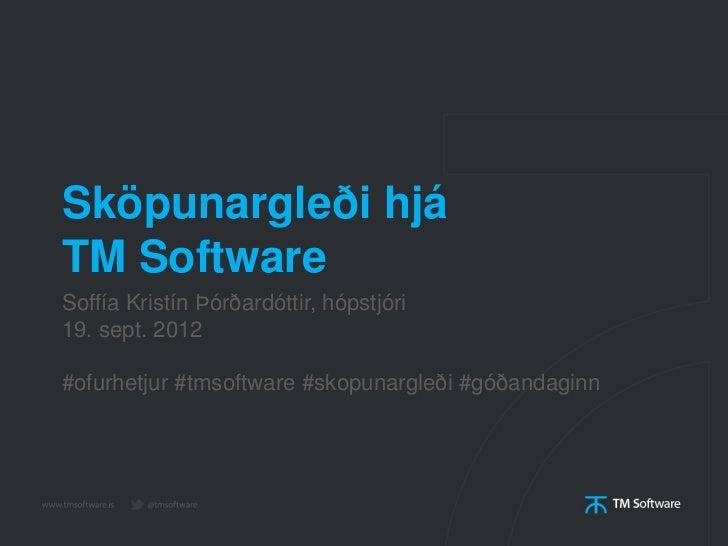 Sköpunargleði hjáTM SoftwareSoffía Kristín Þórðardóttir, hópstjóri19. sept. 2012#ofurhetjur #tmsoftware #skopunargleði #gó...