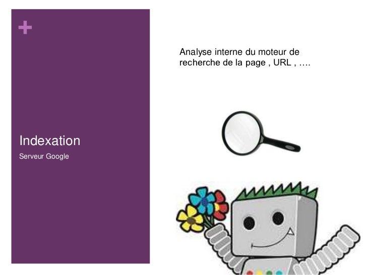 +                 Analyse interne du moteur de                 recherche de la page , URL , ….IndexationServeur Google