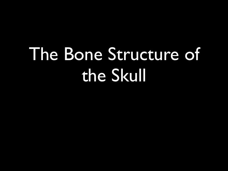 The Bone Structure of      the Skull