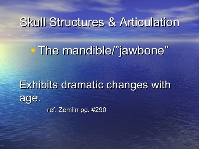 "Skull Structures & Articulation  • The mandible/""jawbone""Exhibits dramatic changes withage.     ref. Zemlin pg. #290"