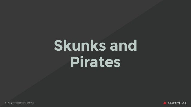 Skunks and Pirates 1 | Adaptive Lab | Skunks & Pirates