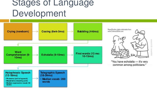 Language 11 stages of language development ccuart Gallery