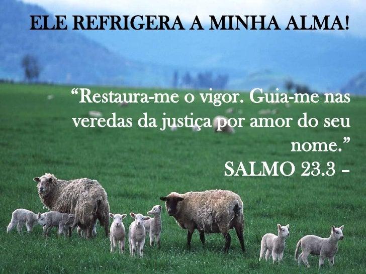 """ELE REFRIGERA A MINHA ALMA!<br />""""Restaura-me o vigor. Guia-me nas veredas da justiça por amor do seu nome.""""<br />SALMO 23..."""